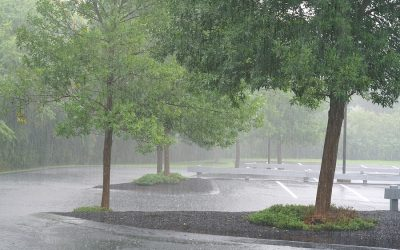 April Showers and Parking Lot Ponding